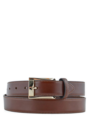 Longchamp Végétal Belts Brown