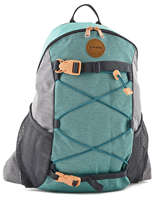 Backpack 1 Compartment + 15'' Pc Dakine Gray girl packs 8210-043
